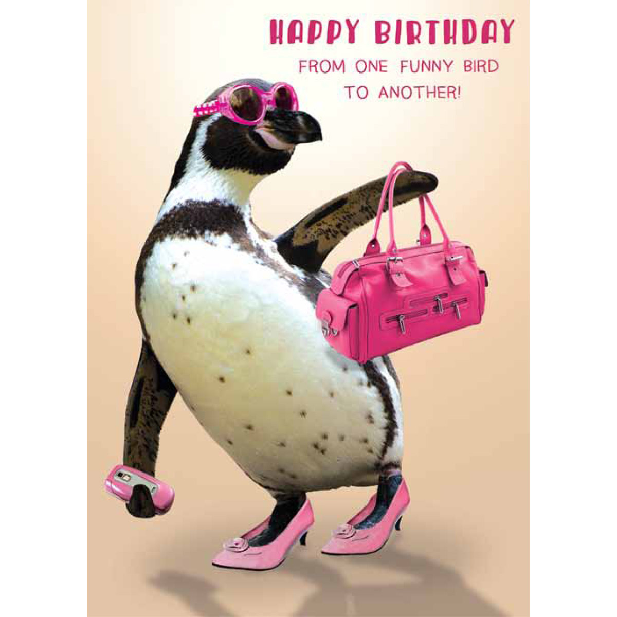 From one funny bird to another birthday card by the bhf from one funny bird to another birthday card kristyandbryce Images