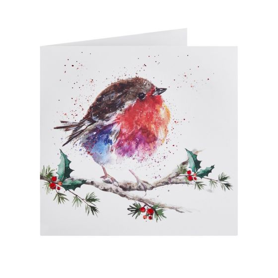 Fluffy Robin and Holly Berries Christmas Cards, 10pk