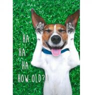 Image for Ha Ha Ha How Old?!! Birthday Card