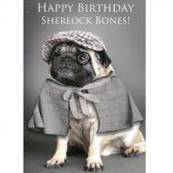 Image for Sherlock Bones Birthday Card
