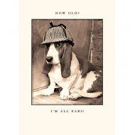 I'm All Ears Birthday Card