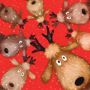 Reindeer Selfie Christmas Cards
