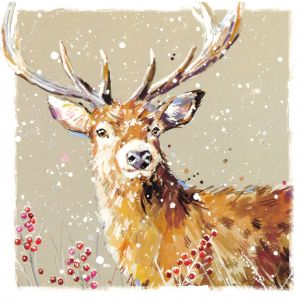 Stag in the Snow Welsh Christmas Cards