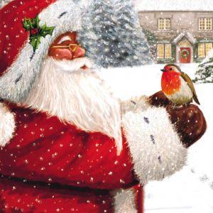 Santa and Robin Christmas Cards