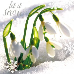 Let it Snow Christmas Cards