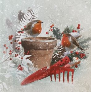 Garden Robins Christmas Cards