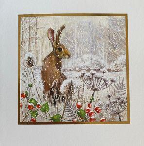 Christmas Hare Christmas Cards
