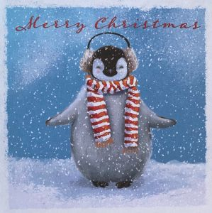 Cosy Penguin Christmas Cards