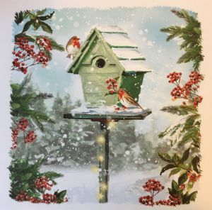 Robins Birdhouse Christmas Cards