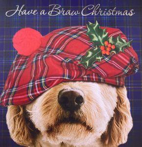 Pup in a Tartan Cap Christmas Cards