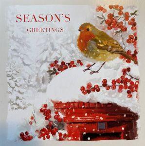 Robin and Postbox Christmas Cards