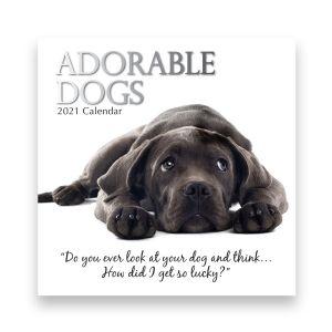 Adorable Dogs 2021 Calendar