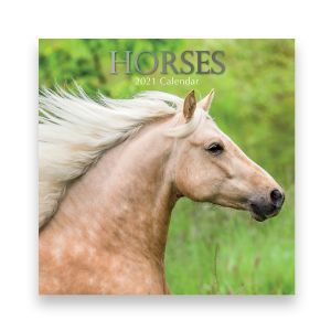 Horses 2021 Calendar