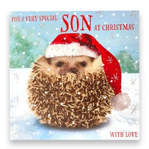 Wonderful Son Hedgehog Christmas Card